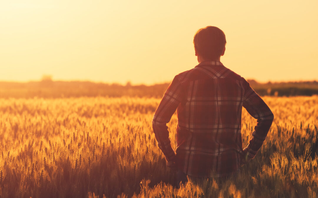 """Zrównoważona produkcja żywności dotyczy nas wszystkich (strategia """"Od pola do stołu"""")"""