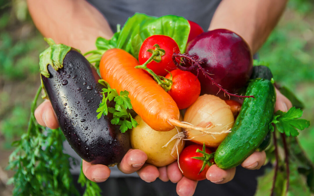 Bezpieczna żywność – co to takiego?